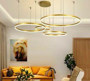 Minimalist Modern LED Chandelier Home Lighting Brushed Anneau Ceiling