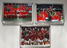 More details for 3x manchester united man utd european cup winners football fridge magnet