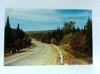 Ontario Canada Algonquin Park Postcard