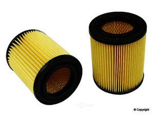 Air Filter-Original Performance WD Express 090 01004 501