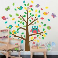 Colorful Tree Owl Bird Butterfly Wall Decal Removable Sticker kids nursery decor