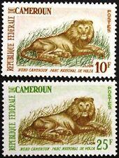 Cameroun Cameroun 1964 403-04 396-97 parc national de waza löwern Lions faune MNH