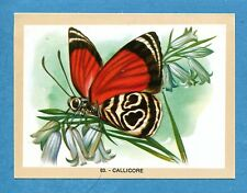 NATURAMA - Lampo 1968 - Figurina-Sticker n. 83 - CALLICORE -Rec