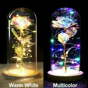 Enchanted Rose Glass LED Lighted Gold-plated Flower Gift Valentine's Day Present