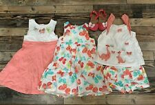 GYMBOREE Butterfly Catcher Dress Top Shorts Shoes Lot Dino Girls Size 4t