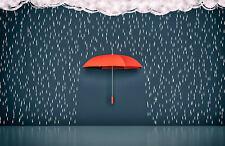 10x8ft Vinyl Raining Raindrop Red Umbrella Scene Background Studio Backdrop Prop