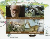 Chad 2018 MNH Charles Darwin 4v M/S Wild Animals Turtles Finches Birds Stamps