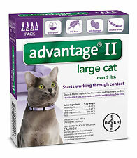 Advantage II for Large Cats Over 9 lbs Flea Control Purple 4 Month