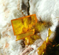 A Bright ORANGE! Wulfenite Crystal Cluster From Rowley Mine Arizona 352gr