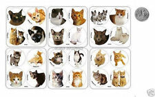 48 Cat Kitten Pet Stickers Animal Kid Party Goody Loot Bag Filler Favor Supply