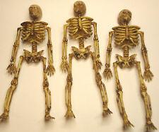 "Lot of 3 Miniature Dollhouse Plastic Skeletons 6"" inch Halloween Decoration"