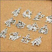 12Pcs Mixed Zodiac Charm Pendants Dangle Beads Jewelry For Making Accessories AU