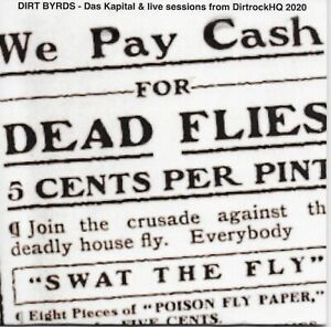 """THE DIRT BYRDS LIVE CD """" We Pay Cash For Dead Flies"""" GARAGE,INDIE,PUNK"""