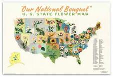 United States USA State Flower Floral MAP Our National Bouquet circa 1911 24x36