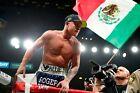 Canelo Alvarez Boxing Mexican Flag Poster 36X24 inches