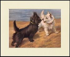 SCOTTISH AND WESTIE TERRIER DOGS BY THE SEA DOG PRINT MOUNTED READY TO FRAME