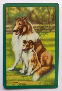 Vintage Swap/Playing Card - SWEET COLLIE DOGS