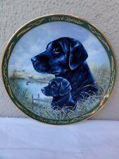 "Franklin Mint "" Royal Doulton "" Black Labrador - Chip Off The Old Block - Plate"