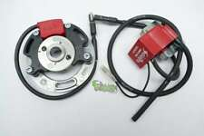 Selettra KZ komplett Zündung Ignition Stator Rotor Spule Dmon 00131282 Racing