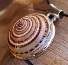 Groß 4 cm Silber Kettennnhänger Ø 3,1 cm Muschel Schnecke Ammonit Natur Anhänger