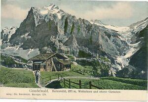 GRINDELWALD - Hertenbuhl, Wetterhorn und Oberer Gletscher -Switzerland