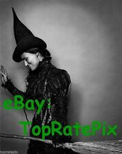 IDINA MENZEL  -  Wicked's Elephaba  (Broadway)  8x10 Photo #4