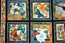 MODERN CURIOSITY PANEL - 60cm x 112cm - Timeless Treasures Fabric