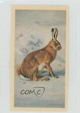1983 Grandee British Mammals Brown Hare #24 2u1