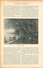 Philosophe Lao-Tseu sur le Boeuf Chine / Île de Polynésie Pandanus GRAVURE 1905