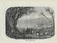 Stampa antica BEIRUT veduta panoramica Libano Lebanon 1879 Antique print