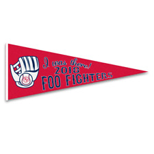 Foo Fighters Official 2018 Boston Fenway Park I was There Felt Pennant