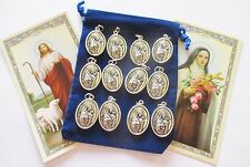 Wholesale Lot 25 St. Therese, Little Flower, Medals for Re-sell, Gifts