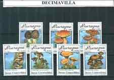 FLSE053, NICARAGUA, 1990, A1314/20, SETAS