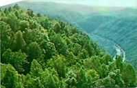 Pipestem WV Resort Bluestone Gorge View Postcard Unused (28488)
