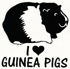 """I LOVE GUINEA PIGS"" VINYL DECAL CAR WINDOW BUMPER STICKER CAVY RODENTS PET"