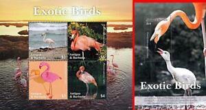 👉 ANTIGUA 2020 FLAMINGO BIRDS S/S + M/S MNH