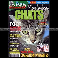NOS AMIS DE LA MAISON N°4 ★ CHAT YORK CHOCOLAT CHOCOLATE ★ SANTE EDUCATION 2004