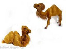 Dromedar  Kamel Felltier Felltiere  Krippentier Krippenfigur Kamel