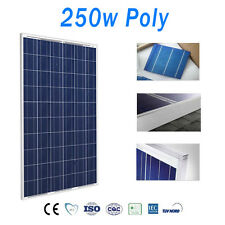 Panel Solar 250w Placas Solares Fotovoltaico Polycrystalline