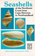 Seashells of the Northeast Coast from Cape Hatters to Newfoundland Gordon, Juli