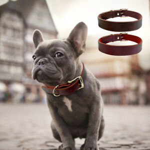 Dog Collar For Small Dogs French Bulldog Real Genuine Leather Collars XS S M