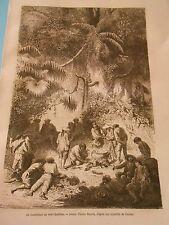 Un constrictor au court bouillon ( serpent ) Indiens Peru Gravure Print 1872