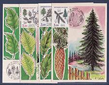 carte  1er jour   nature les 4 arbres  45 Orléans   1985
