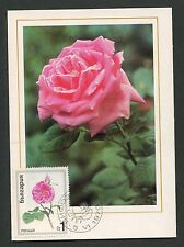 BULGARIA MK 1970 FLORA ROSEN ROSE ROSES MAXIMUMKARTE CARTE MAXIMUM CARD MC d6316