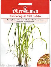 Zitronengras East Indian Cymbopogon flexuosus 50 Korn Dürr Samen