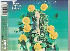 TEARS FOR FEARS sowing the seeds of love CD MAXI west germany