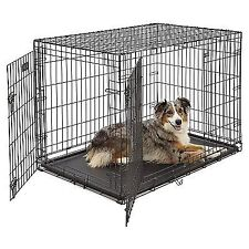 "MidWest iCrate 42"" Double Door Folding Metal Dog Crate w/ Divider Panel, Floor"
