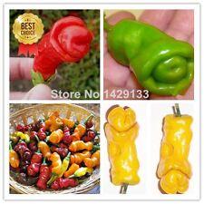 Penis Chili Red Hot Peter Pepper seeds 200pcs Vegetables & fruit seeds