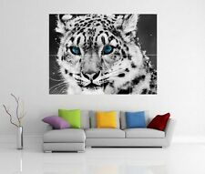 WHITE LEOPARD ART GIANT WALL ART PICTURE PRINT POSTER G135