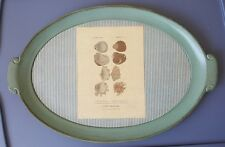 """VINTAGE SEZZATINI WOOD GREEN TRAY SEA SHELLS NEW 15.5"""" HAND PAINTED IN ITALY"""